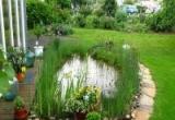 Пруд – основные этапы обустройства искусственного водоема на участке